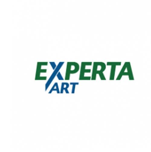 Cliente Experta ART